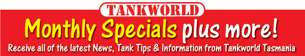 Tankworld Newsletter Header